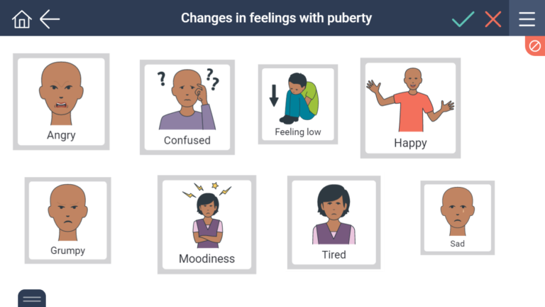 Sample screen of changes in feelings with puberty